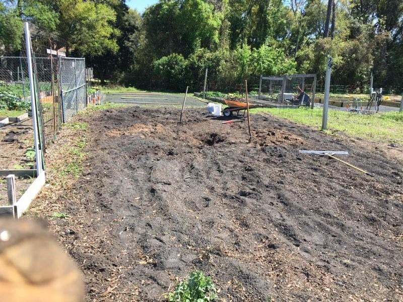 prepping the garden - 20'X40'