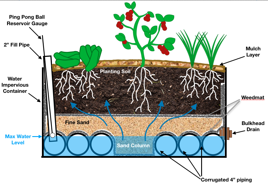 Wicking Bed Cross Sectional